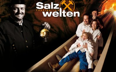 VIP/Exclusive Private Hallstatt Salt Mine Tour from Vienna